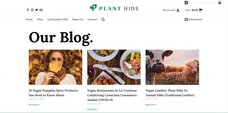 plant hide vegan blog
