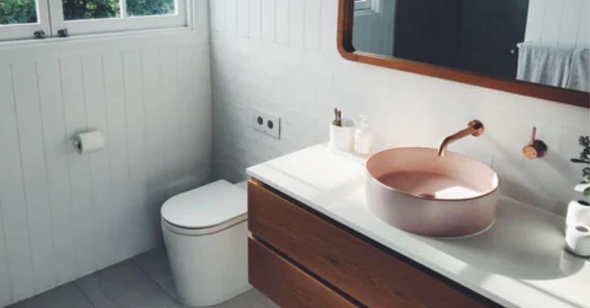eco-friendly bathroom toilet paper sink