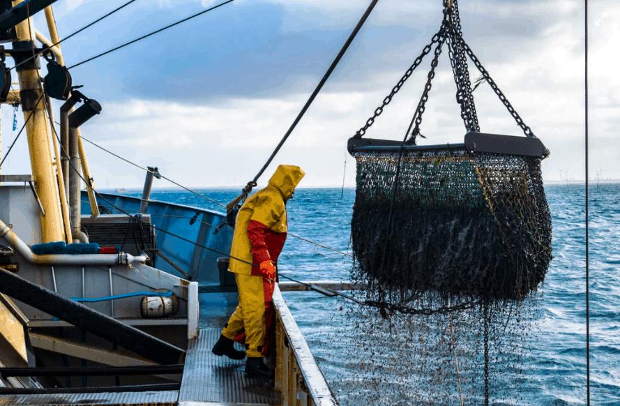 Ocean Conservancy Fisheries